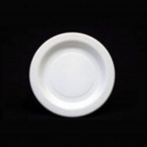 Plastic Dinner Plate (25)